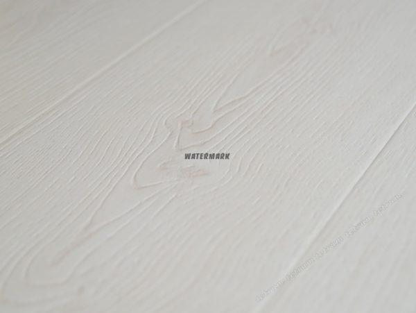 Дуб белый-01