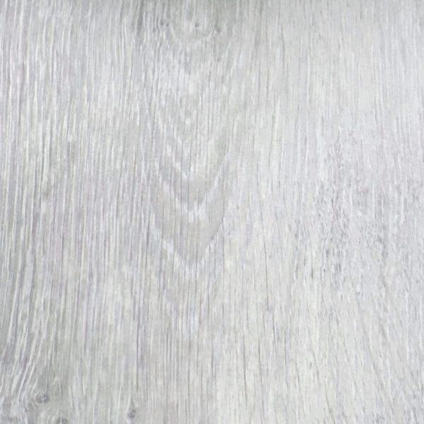 Дуб Светлый